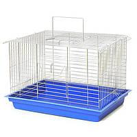 """Клітка для гризунів """"Кролик макс"""" 565×400×360 мм різні кольори"""