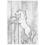 Альбом для малювання BRUNNEN Ponylove, А4, 100 аркушів, фото 2