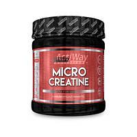 Креатин ActiWay Micro Creatine 300g