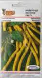 Семена Фасоль спаржевая Бергольд 20 г. Германия длиной 12-14 см