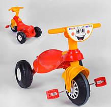 Трехколесный велосипед Pilsan 07-132 детский