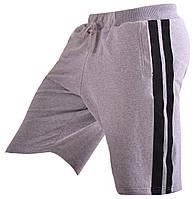 Мужские шорты для тренировок Berserk Sport серый/черный