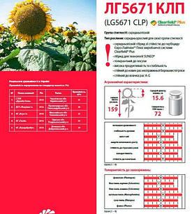 Насіння соняшнику Лімагрейн ЛГ 5671 КЛП (евролайтинг)