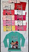 """Реглан підлітковий PARIS з принтом на дівчинку 9-12 років (12кол) """"BAMBINI"""" купити недорого від прямого постачальника"""