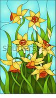 Витраж оконный - Витраж цветы Нарцис