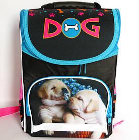 Каркасный рюкзак-короб с ортопедической спинкой для девочки, Dog
