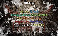 Поступление: Activlab, BioTech, Genius Nutrition, Kevin Levrone, Mars, Monster Energy, Muscle Care, Real Pharm, Scitec Nutrition, SNICKERS.