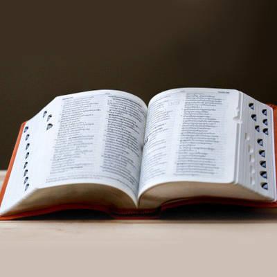 Словники та розмовники
