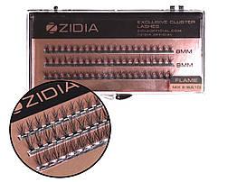 Вії накладні пучкові Полумя Zidia Cluster Lashes Flame Series C 0.10 Mix S (3 лєнти 8/9/10 мм)
