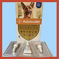 Advocate Bayer для собак від 25 кг до 40 кг (3 піпетки)