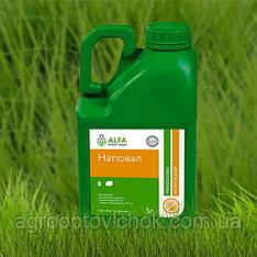НАПОВАЛ (5л) инсектицид