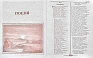 Тарас Шевченко. Усі твори в одному томі, фото 2