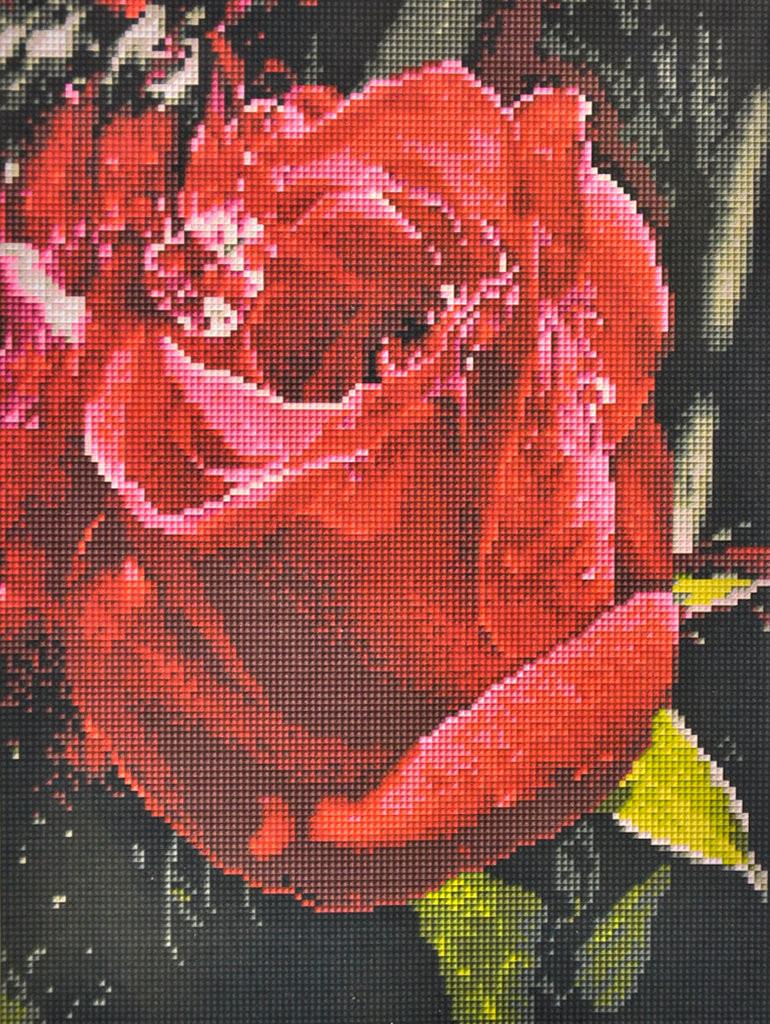 Алмазна мозаїка Червона троянда 30х40 EF984