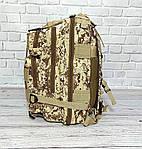 Тактичний, похідний рюкзак Military. 25 L. Камуфляжний, піксель, мілітарі. / T413, фото 6