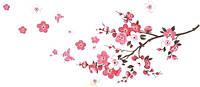 Наклейка виниловая Сакура цветущая