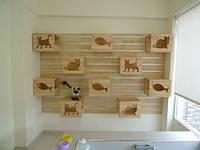 Утепленные домики для кошек