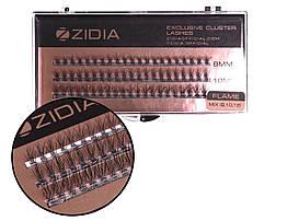 Вії накладні пучкові Полумя Zidia Cluster Lashes Flame Series C 0.10 Mix (3 лєнти 8/10/12 мм)
