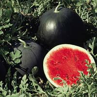 Семена арбуза Ред Стар F1 1000 семян Nunhems