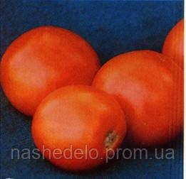 Семена томата Скиф F1 1000 семян Nunhems