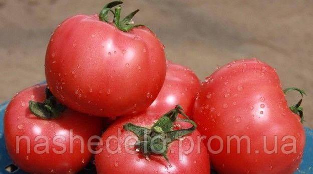 Нейрон (8014) Ф1 500 сем. томат Нунемс