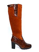 Женские высокие стильные сапоги, натуральный рыжий замш+кожа крокодил, фото 1