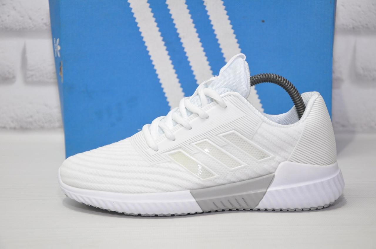 Жіночі білі дихаючі кросівки кросівки сітка в стилі Adidas Climacool