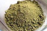 Конопляный протеин,  растительный белок,  веганский, дой-пак 250г, Veganprod, фото 2