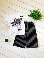 Костюм летний для девочки с собачкой, футболка + кюлоты, от 86 до 116 см роста