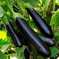 Семена Баклажана  длинный фиолетовый  1кг. Германия