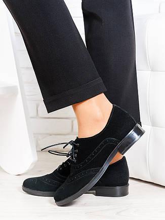 Oksford туфлі чорна замша 6649-28, фото 2