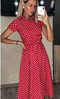 Літнє плаття в горох на гудзиках 054 В / 05, фото 1