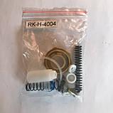 Ремкомплект для краскопультов H-4004 ITALCO RK-H-4004, фото 2