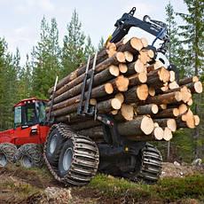 Услуги лесозаготовки и деревообработки