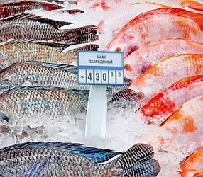 Тримач касет цін ДЕЛІ в лід PC-DELI-ICE-SET-222320, фото 2