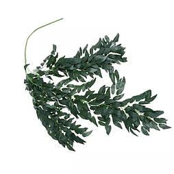 Искусственная декоративная ветка рускуса зеленого  100 см