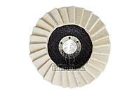 Коло повстяний пелюстковий на УШМ Асеса - 125 x 25 мм