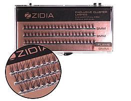 Вії накладні пучкові Полумя Zidia Cluster Lashes Flame Series C 0.10 (3 лєнти, розмір 9 мм)