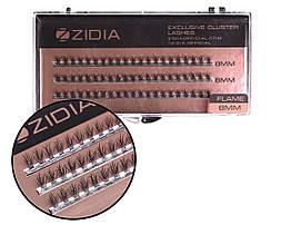 Вії накладні пучкові Полумя Zidia Cluster Lashes Flame Series C 0.10 (3 лєнти, розмір 8 мм)