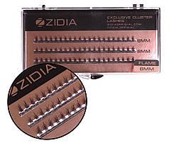 Вії накладні пучкові Полумя Zidia Cluster Lashes Flame Series C 0.10 (3 лєнти, розмір 6 мм)