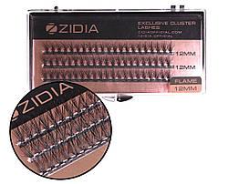 Вії накладні пучкові Полумя Zidia Cluster Lashes Flame Series C 0.10 (3 лєнти, розмір 12 мм)
