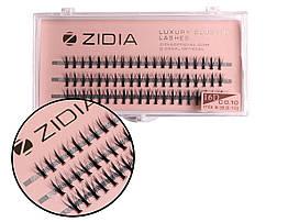 Вії накладні пучкові Zidia Cluster Lashes 16D KIM C 0.10 MIX S (3 лєнти, розмір 8/9/10 мм)