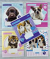 Тетрадь на 12 листов в косую линию Keith Kimberlin Pet portrait-21 765336 7703Ф+1 1 вересня Україна