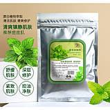 Альгинатная маска освежающая JIAZHOUYIN CHUA Mint, с экстрактом мяты, 200 г, фото 2