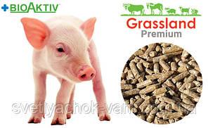 Престартовий корм що містить премікс Prostafeed для поросят повнораціонний 100% 5-40 день Biomix от 1 кг