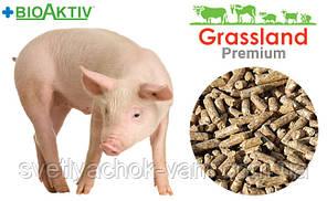 Комбікорм Стартовий що містить премікс Prostafeed для поросят повнораціонний 100% від 10 до 35кг от 1 кг