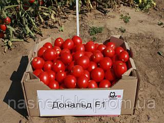 Семена томата Дональд F1 1000 семян Nunhems