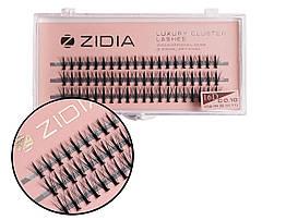 Вії накладні пучкові Zidia Cluster Lashes 16D KIM C 0.10 MIX M (3 лєнти, розмір 9/10/11 мм)