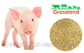 Концентрат БМВД Grassland з мінеральним комплексом для свиней Гровер 15% Преміум від 20 до 50 кг, от 1 кг