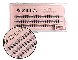 Вії накладні пучкові Zidia Cluster Lashes 16D KIM C 0.10 (3 лєнти, розмір 8 мм)
