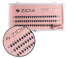 Вії накладні пучкові Zidia Cluster Lashes 16D KIM C 0.10 (3 лєнти, розмір 6 мм)